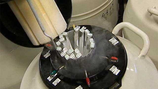 банк доноров спермы