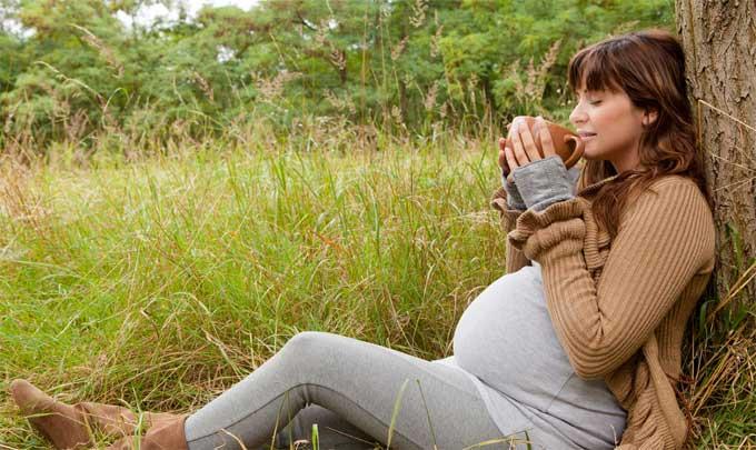 грушанка для зачатия