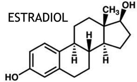 молекулярная формула эстрадиола