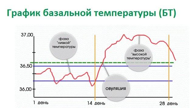 график БТ