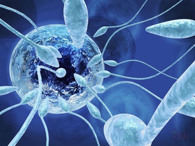 тератозооспермия как забеременеть