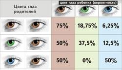 прогноз цвета глаз у ребенка