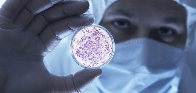 Оживить сперматозоиды