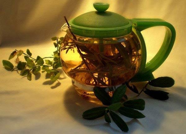 чай со спорышем