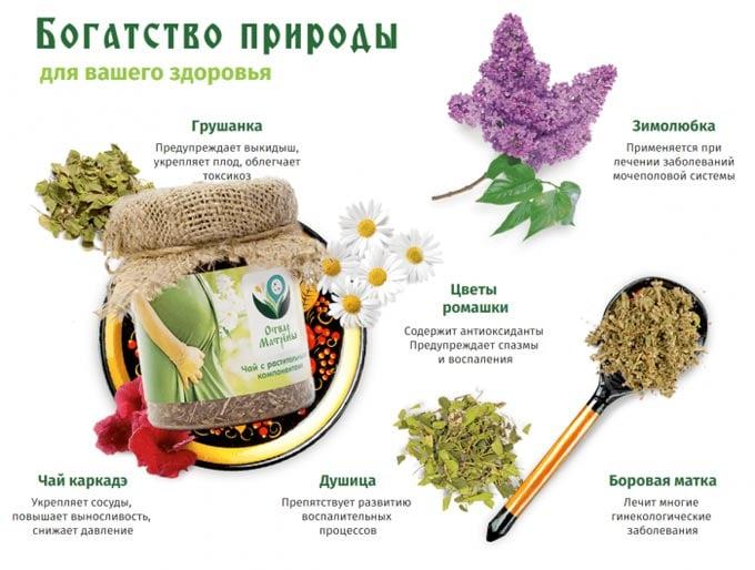 травы от бесплодия для мужчин и женщин