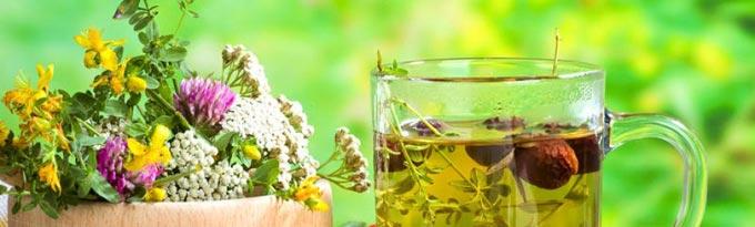 Эндометриоз лечение травами