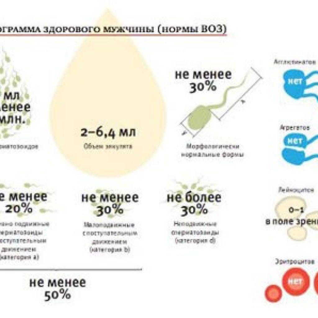 sostav-muzhskoy-spermi