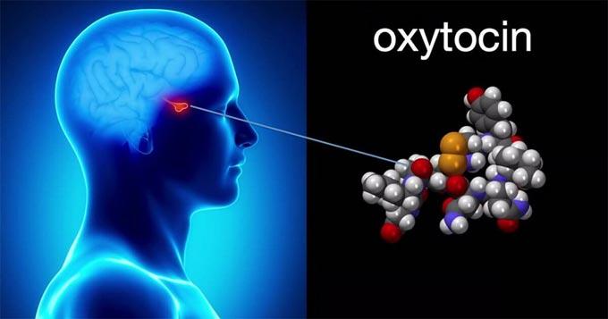 как принимать окситоцин