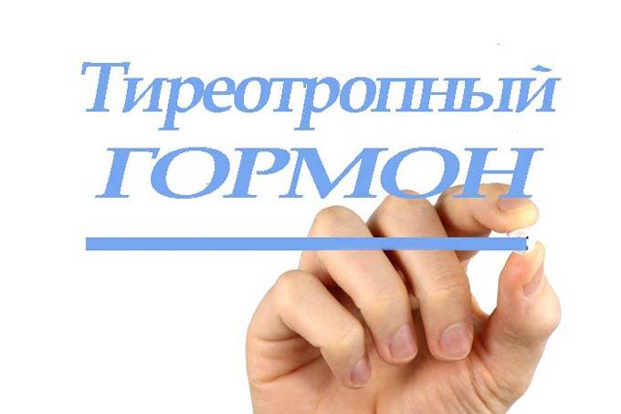 тиреотропный гормон