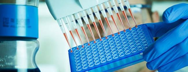 анализ крови на гормоны ттг