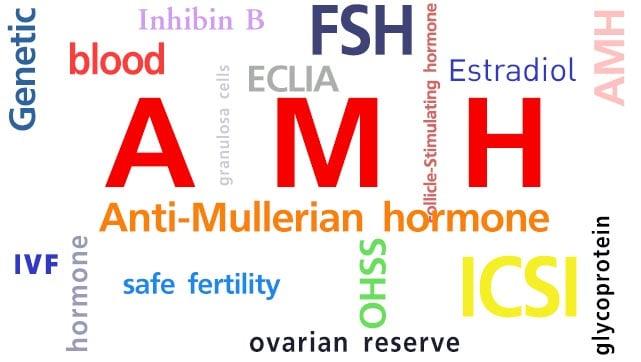 норма антимюллерова гормона