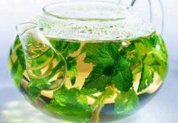 Специфика влияния мятного чая на лактацию