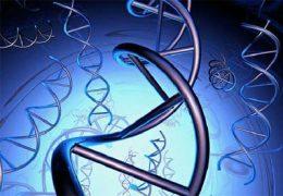 Как жить с генетической патологией Моносомией Х