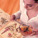 6 чудодейственных рецептов из спорыша при бесплодии