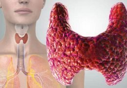 Роль тиреотропного гормона (ТТГ) в организме человека