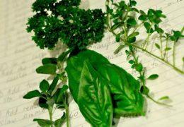 Самые безопасные и эффективные травы от мужского и женского бесплодия